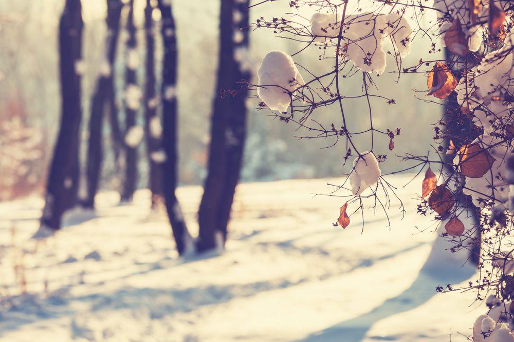 Kışın Yurt Dışında Keşfetmeniz Gereken 9 Yer