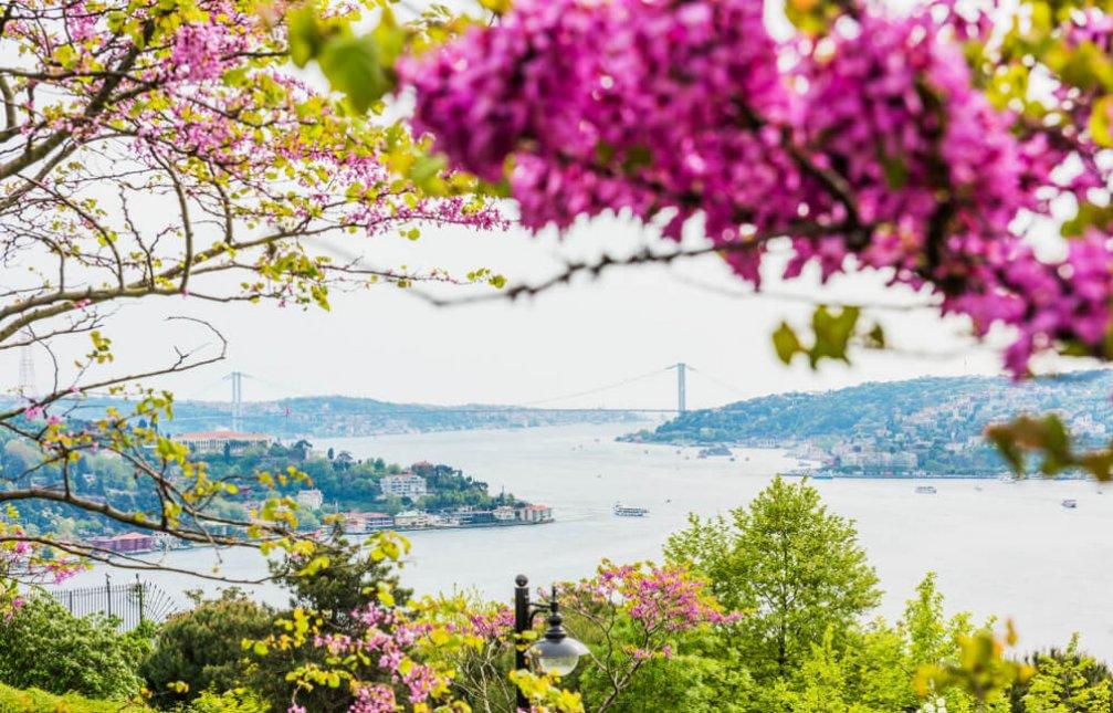 Şehirde Sakinlik: İstanbul'un Parkları