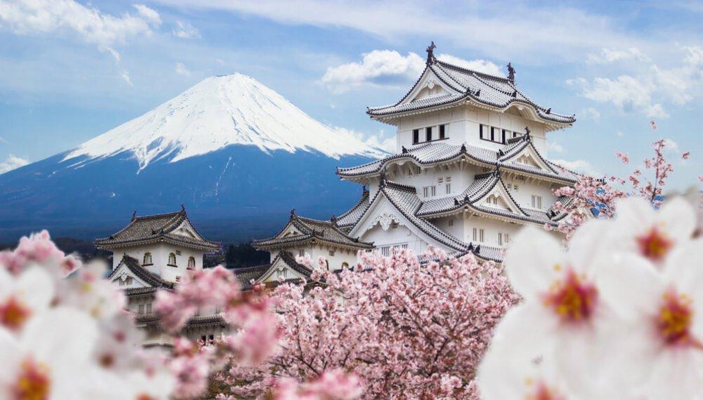 Hayatın Mucizesi: Japonya'nın Kutsal Kiraz Çiçeği Sakura
