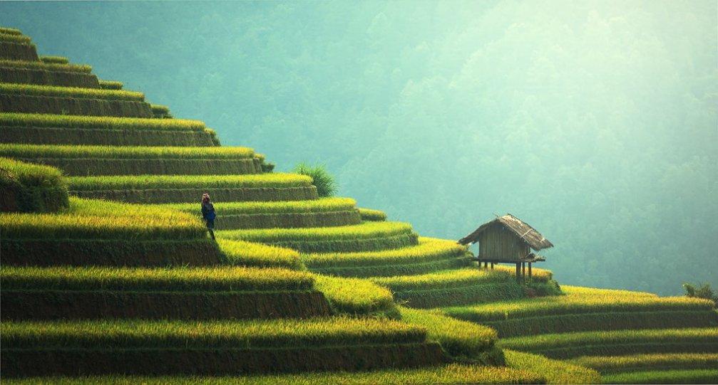 Kurumsal Şirketlerin Gözü Endonezya'da