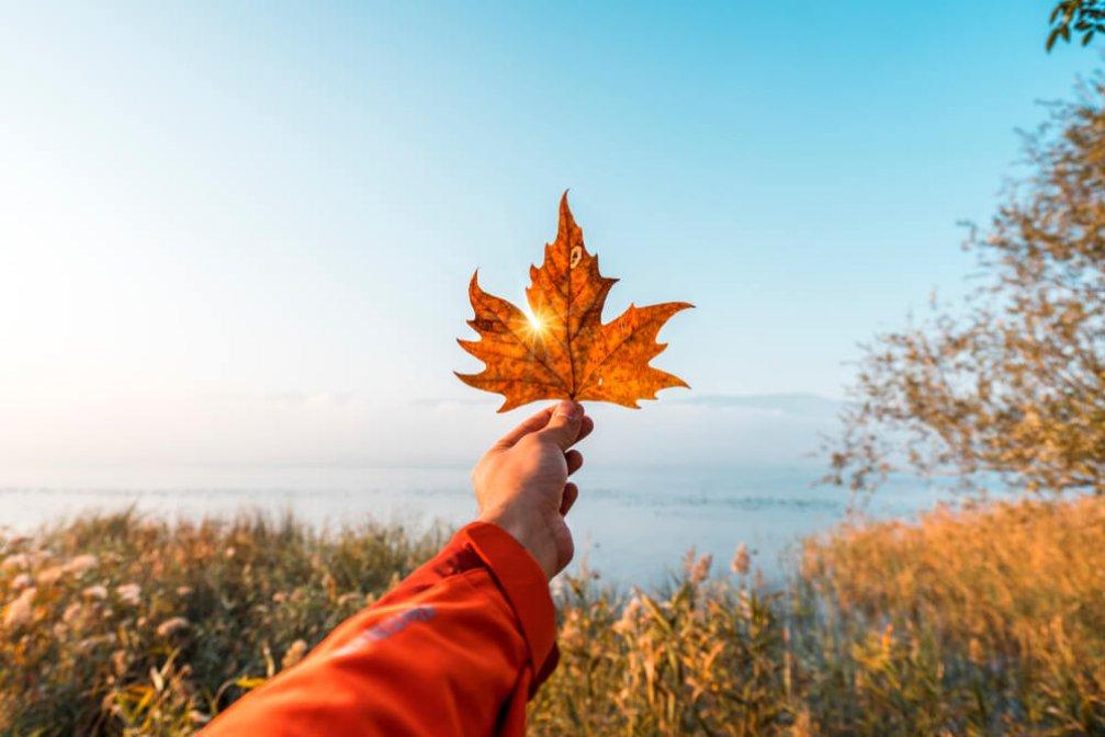 Türkiye'de Sonbaharı En İyi Fotoğraflayacağınız 5 Yer